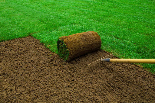 Exactly How to Care For New Turf Lawns